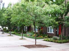 Irving Street Townhomes